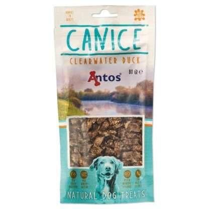 Antos-Canice-Duck