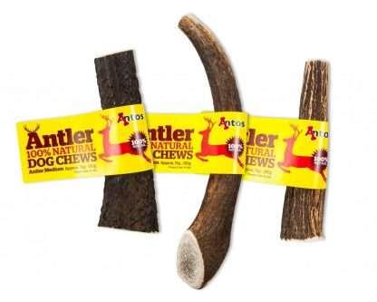 Antos-Antler-Medium
