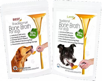 Bone-Broth-dogs