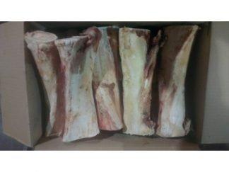 Raw-Beef-Shanks-Large
